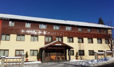 Oferta pentru Craciun 2019 Hotel Roata 3* - Pensiune Completa