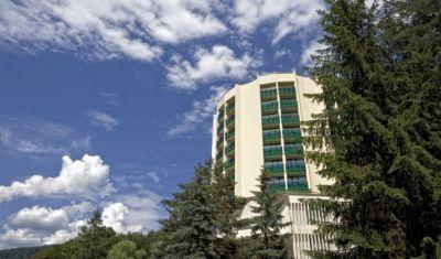 Oferta pentru Craciun 2018 Danubius Health Spa Resort Bradet 4* - Demipensiune