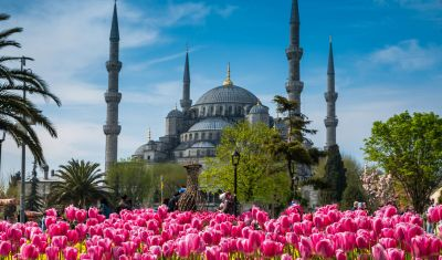 Oferta pentru Piata de Craciun 2019 Piata de Craciun Istanbul - Mic Dejun